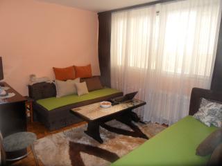 Apartment Sarajevo Center Drvenija D