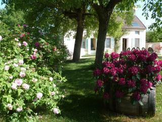Offrez vous une halte près du vignoble Bourguignon, Magny-lès-Aubigny