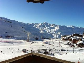 Beautiful 1 bedroom apartment-Direct Access on ski