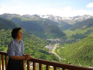 Acogedor y con encanto - Mont - Baqueira Beret, Vielha