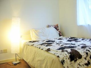Nice double room near CentralLondon