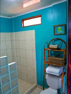 Blue Batrhoom. Ensuite to the Blue Bedroom. Has a shower w/ hot water.