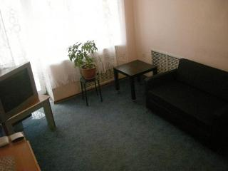 Apartment in Novosibirsk #171, Moscow