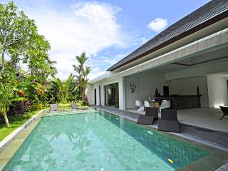Charming Villa with Rice-field view Seminyak
