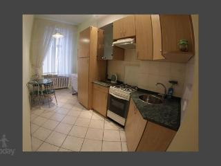 Apartment in Kiev #300