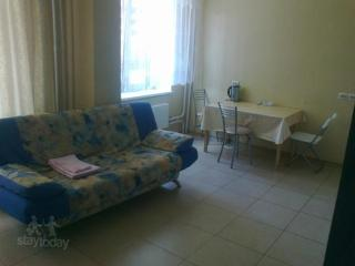 Apartment in Saint-Petersburg #563, Moscow