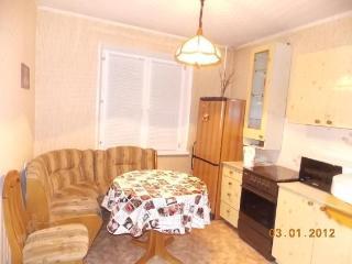 Apartment in Krasnoyarsk #757, Moskau