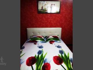 Apartment in Saratov #785, Moskau