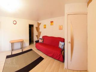 Apartment in Novosibirsk #1080