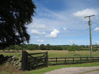 Fields outside Beech Cottage