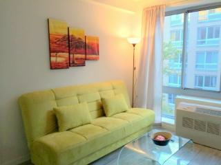 Lovely Furnished 2 Bedroom, New York City
