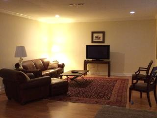 Furnished Loft Basement Apt in Brookhaven, Atlanta