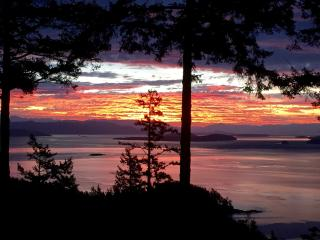 Secluded cedar two story with incredible oceanview, Orcas