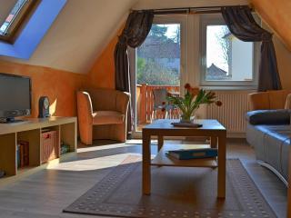 Ferienwohnung Dresden Pillnitz bis 4 Personen
