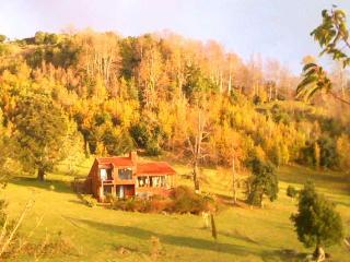 Lago Ranco Boutique Lodge