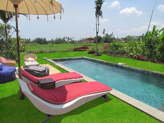 360° amazing view close ubud CENTRE, Lodtunduh