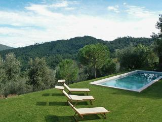 Hilltop villa vetween Lucca and Camaiore coast- vineyard views. SAL MCC