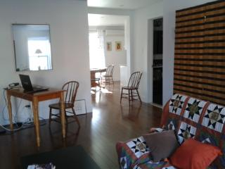 Très joli appartement proche Canal Lachine