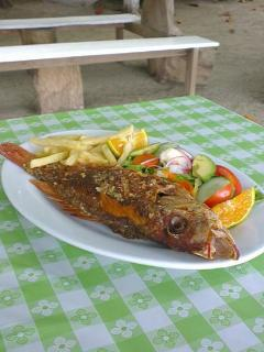 A typical Costa Rican plate. Local red snapper, garden salad and fries...