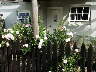 Nostalgia Self Catering Garden Cottage