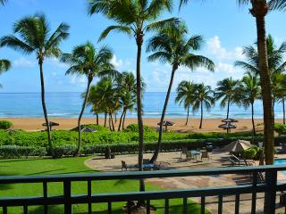 Luxury Ocean/beach front Villa at The Wyndham, Rio Grande