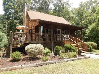 Well Appointed Cabin - 7 Mins from TIEC, Rutherfordton