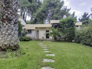Detached house in Sani, Kassandra, ID: 3401