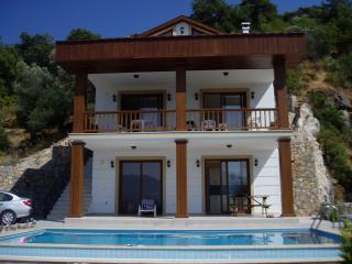 Gorgeous villa with an unforgettable view, Yesiluzumlu