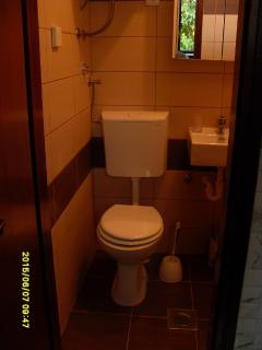 SA(2): bathroom with toilet