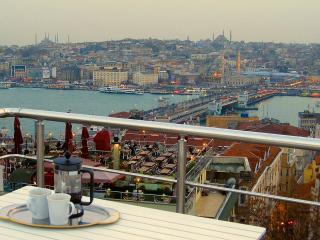 Fabulous Golden Horn views from Shared Terrace, Istanbul