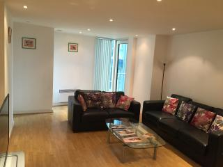 Central London luxurious 2 double bedroom flat