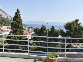 TH00736 Apartments Popovac / One bedroom A4, Gradac