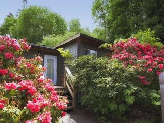 Cottage in bloom