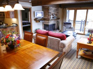 Charming Condo with 3 Bedroom-3 Bathroom in Aspen (Lift One - 301 - 3B/3B)