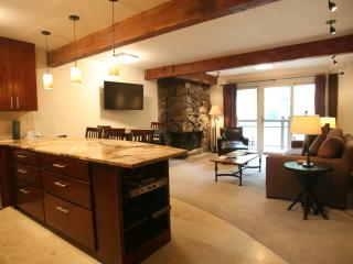 1 Bedroom/1 Bathroom Condo in Aspen (Condo with 1 BR/1 BA in Aspen (Lift One - 409 - 1B/1B))