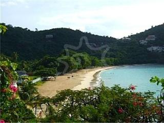Mahogany Run Apartment 11, Grand Anse