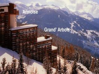 GRAND ARBOIS, Les Arcs