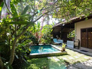 Hyacinth House with Private Pool in the Ricefields of Ubud