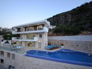 Villa Tansy - Wow factor villa with jacuzzi
