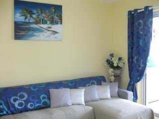 Salon avec canapé lit très bonne literie + méridienne