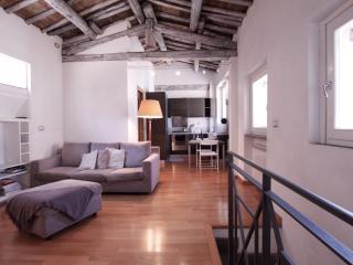 Pettinari, splendido appartamento in posizione eccellente, Roma