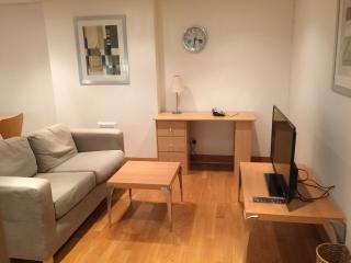Spacious One Bedroom Apartment in Paddington W2, Londres
