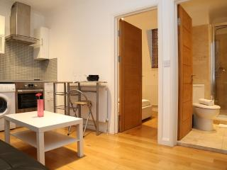 Alexander Paddington Apartments One Bedroom, London