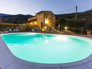 Casa di Dante - Luxury villa - Pisa area with pool, Vicopisano