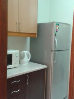 fridge, microwave, kettle and gas stove
