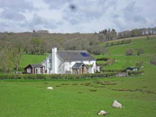 Rhedyn Guesthouse - The Priest's Closet, Builth Wells