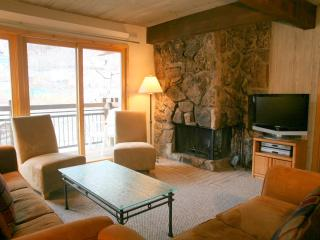 Beautiful 2 Bedroom, 2 Bathroom Condo in Aspen (Aspen 2 Bedroom, 2 Bathroom Condo (Lift One - 407 - 2B/2B))