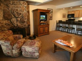 Gorgeous 1 BR & 1 BA Condo in Aspen (Aspen 1 BR & 1 BA Condo (Lift One - 104 - 1B/1B))