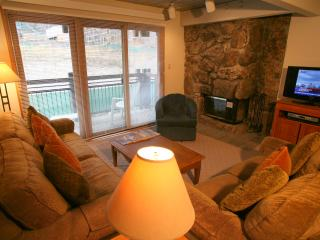 Heavenly 2 Bedroom/2 Bathroom Condo in Aspen (Nice 2 BR/2 BA Condo in Aspen (Lift One - 308 - 2B/2B))