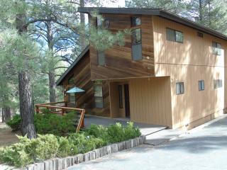 3 BR 2 BA Vacation Lodge in the Pines of Flagstaff